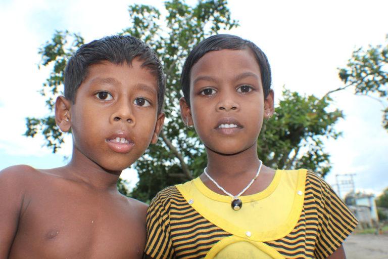 IMG_0068 India Sunderbans landscape small